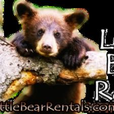 Profil korisnika Little Bear