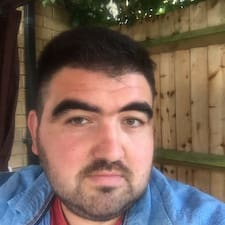 Marius Georgel User Profile