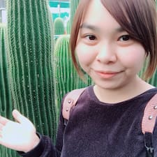 Perfil de usuario de 小米