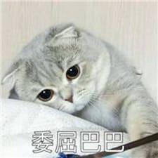 婧宜 Brugerprofil