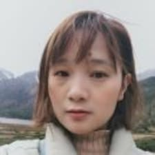 容 felhasználói profilja