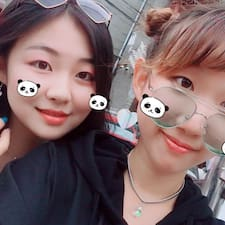 Profil utilisateur de 一哲