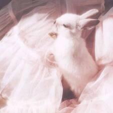 兔兔 Brukerprofil