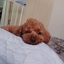 Sunghyun User Profile