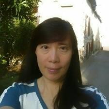 Chingi Brukerprofil