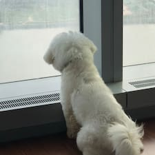 Weiqiang User Profile