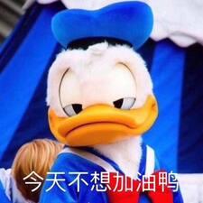 响 User Profile