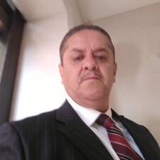 Delfino felhasználói profilja