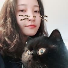 Zizhu User Profile