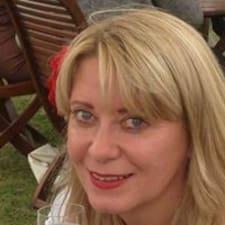 Fay felhasználói profilja