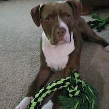 โพรไฟล์ผู้ใช้ Becca
