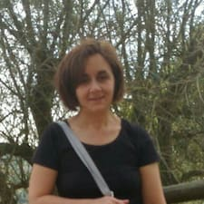 Marilena User Profile