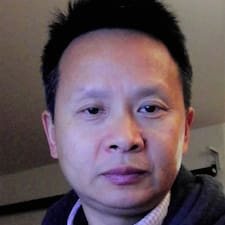 Wenqing User Profile