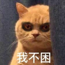 Wenxin User Profile