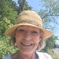 Beryl felhasználói profilja