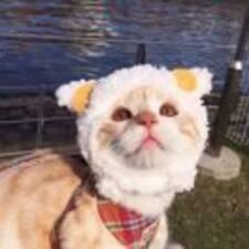 Profil utilisateur de 维宁