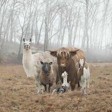羊님의 사용자 프로필