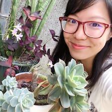 Profil korisnika 小p