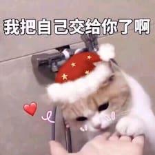 Perfil do usuário de 金宇