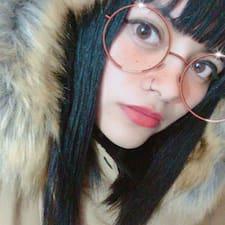 Profil utilisateur de Gato