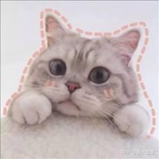 Perfil do usuário de 晓琴