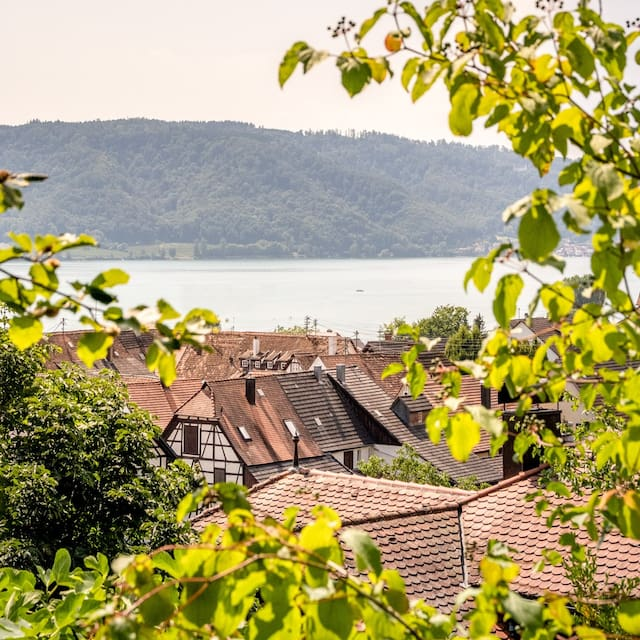 Arne's Personal Bodensee Guidebook with Tips & Recommendations