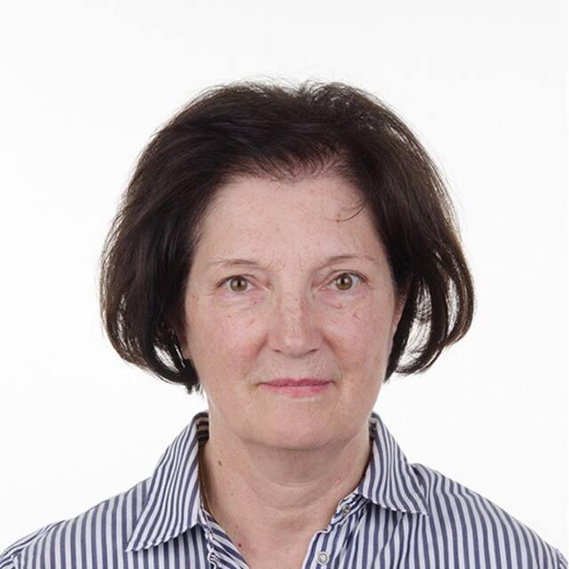 Vodič (Vesna)