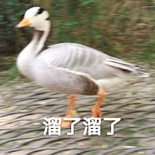 Bi User Profile