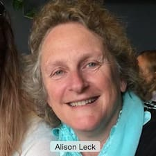 Perfil de usuario de Alison