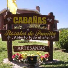 Profil utilisateur de Cabañas Rosales De Punilla