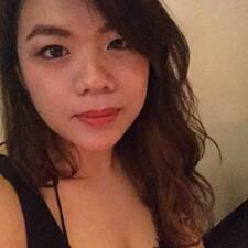 Profil Pengguna Tay