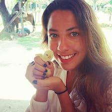 Solana User Profile