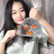 蝶 Brugerprofil