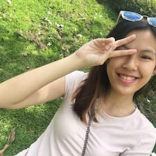 Shunying User Profile