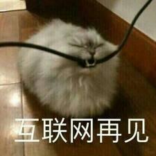 Profil utilisateur de 湛君
