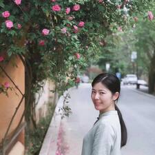 袁 felhasználói profilja