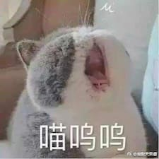 Nutzerprofil von 蔡妍