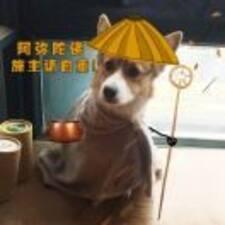 Nutzerprofil von 慧婷