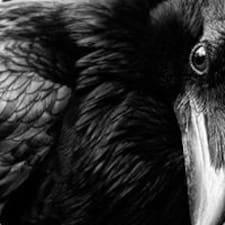 Profil utilisateur de Corvus