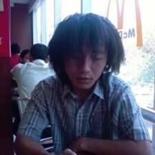 Seitin User Profile