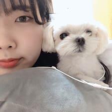 도연 felhasználói profilja