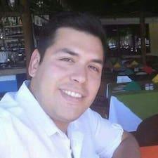 Vidal felhasználói profilja