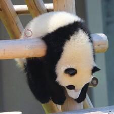 婧 Brugerprofil