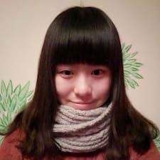 噔噔 User Profile