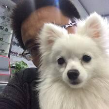 Profil Pengguna 志丰