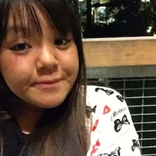 Profil Pengguna Miffy