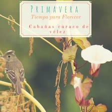 Cabañas Curaco De Vélez User Profile