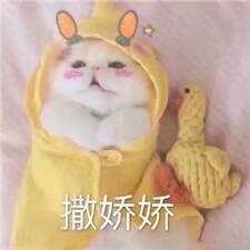 Профиль пользователя 圣彩