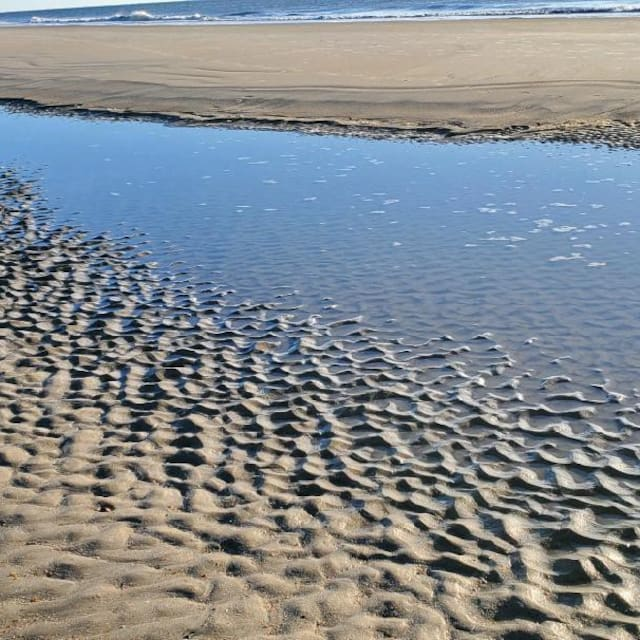 Coral & Sand, LLC Guidebook