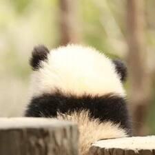 Yao的用戶個人資料